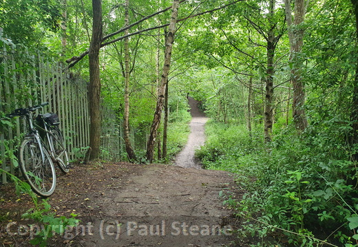 Irlam Linear Park